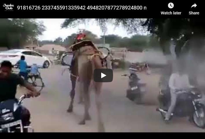 Pakistani local senitizer machine-chaskaclub